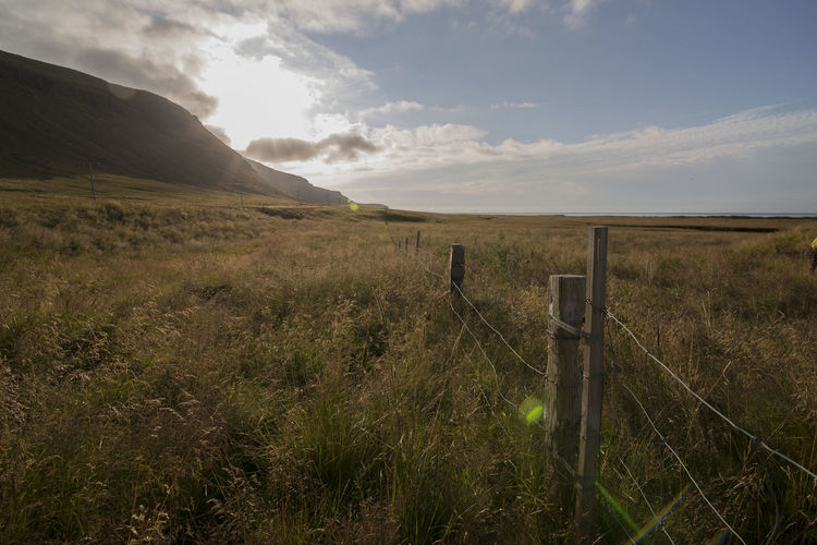 Iceland Light Nature Sunlight Fence Field Grass Iceland_collection Landscape Nature Outdoors Scenics Sun Tranquil Scene Tranquility