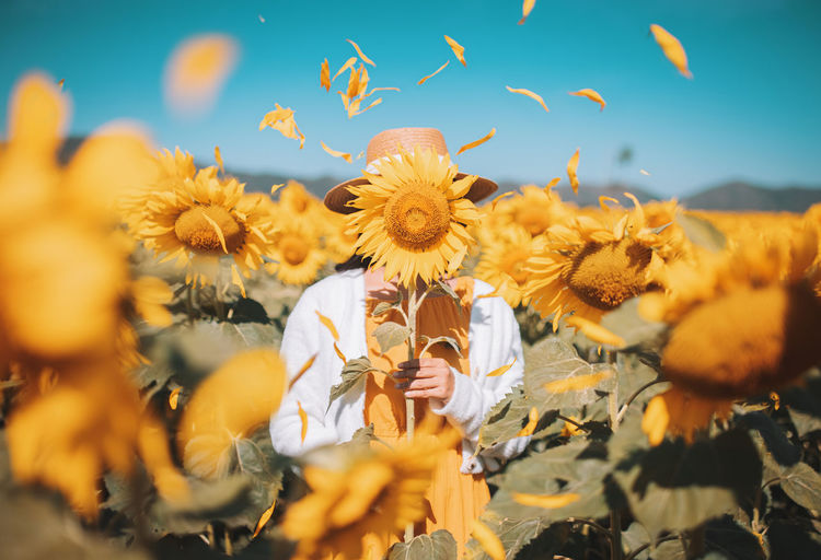 Woman covering face with flower at farm during sunny day