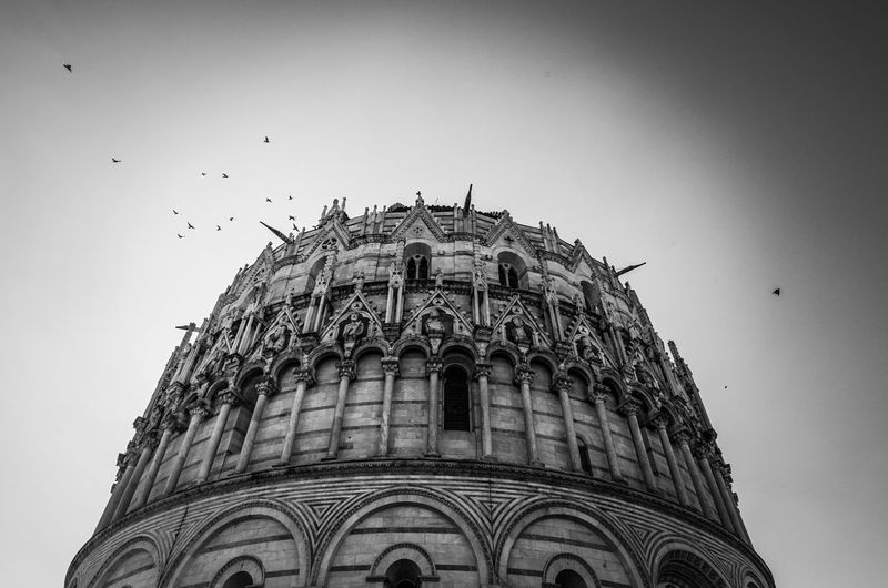 Birds in flight by Pisa Baptistery in Tuscany. Battistero Di San Giovanni Pisa Baptistry Pisa Baptistery St. John Pisa Tuscany Birds Flying Birds Saint John Baptistery Black And White Monochrome Photography Gothic Style Gothic Architecture Medieval Catholicism Travel Sky Marble Romanesque Flying Piazza Dei Miracoli Clear Sky
