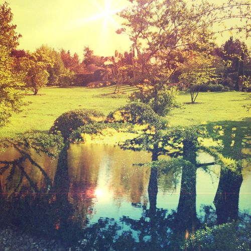 RE FLECT Landscape_Collection Double Exposure Conceptual Water Reflections