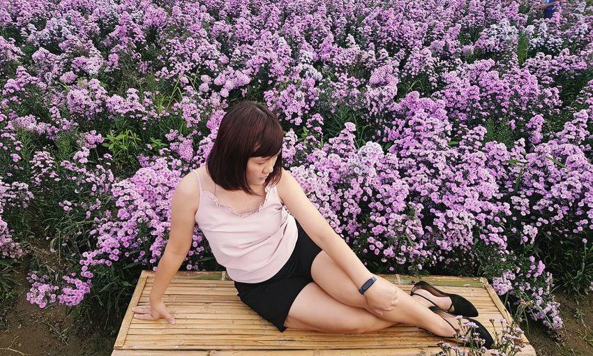 Rear view of woman sitting on purple flowering plants