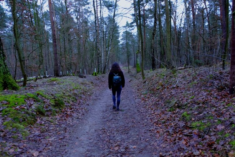 Travelyourcity Forest Misterious Colours Alone Giel Girl Road Path Pathtowhere Where Roadtosuccess An Eye For Travel Forest Tree Pine Tree Dog The Way Forward Adult People One Person Nature Tree Area One Woman Only Only Women Day Shades Of Winter