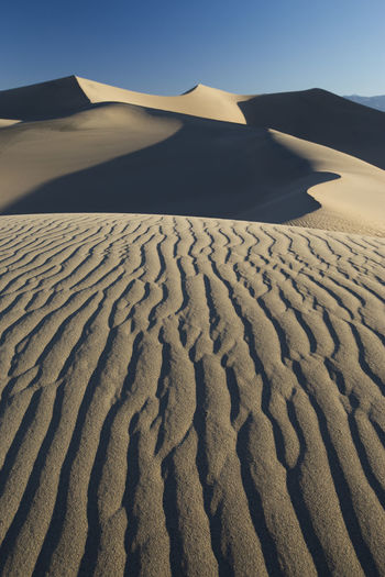 Land Scenics - Nature Sky Sand Nature Tranquil Scene Sand Dune No People Beauty In Nature Desert Tranquility Landscape Climate Day Clear Sky Sunlight Arid Climate Non-urban Scene Environment Pattern Outdoors Isolation Desert