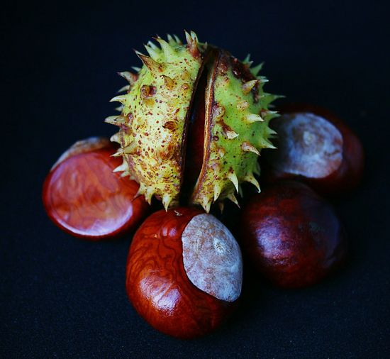 Close-up of chestnuts against black background