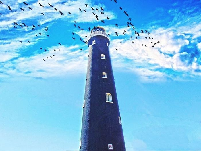 Dungeness Sky Lighthouse Traveling Travel Wings Fly Blue Blue Sky Uk
