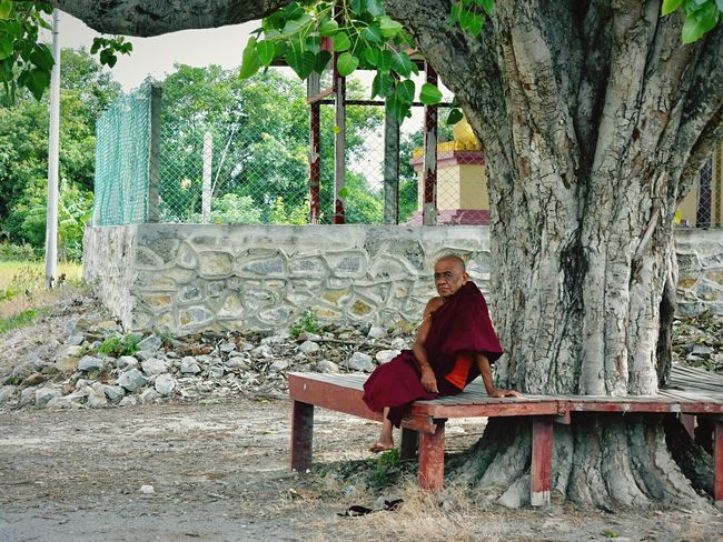 The Journalist - 2017 EyeEm Awards Tree Sitting Full Length One Person Day Outdoors Smiling Young Adult Real People Young Women Nature Adult People Adults Only Nyaung Shwe EyeEmNewHere Myanmar Inle Lake Nyaungshwe Monk  Buddhism Buddhist Buddhist Monks The Street Photographer - 2017 EyeEm Awards