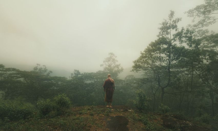 Cloud forests Fog Plant Tree One Person Real People Full Length Nature Rear View Solitude Walking Land Beauty In Nature Tranquility Day Tranquil Scene Lifestyles Forest Standing Outdoors Hazy
