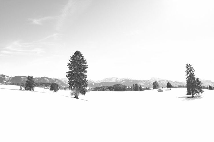Snow Winter Cold Temperature Landscape Covering Snowcapped Mountain Mountain No People Environment Scenics - Nature Black And White monochrome photography