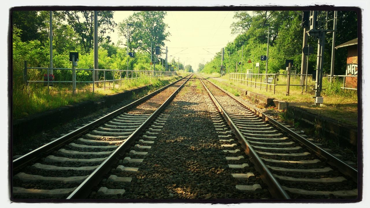 railroad track, transportation, rail transportation, tree, railroad, no people, day, nature, outdoors, sky