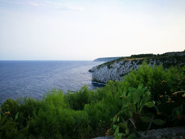 Sea Horizon Over Water Water Tranquil Scene Scenics TranquilityClear Sky Tourism Beauty In Nature Tree Blue Non-urban Scene Nature Calm Cliff Idyllic Remote Solitude Ocean Coastline Growth Sky