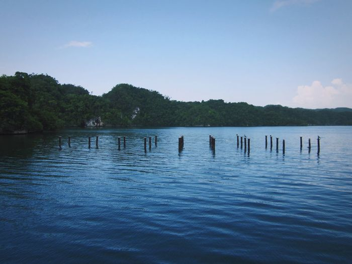 Carribean Wooden Posts Posts In Water Posts Water Beauty In Nature Scenics - Nature Sky Waterfront Tranquil Scene Lake Rippled