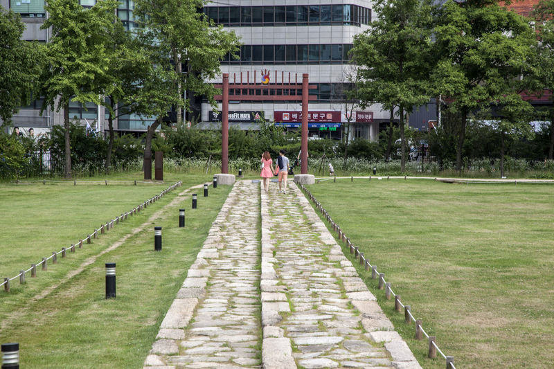 Architecture Built Structure City City Life Couple Day Diminishing Perspective Footpath Grass Green Color Growth Historic Place Jeongneung Lawn Leisure Activity Lifestyles Nature Outdoors Park Plant The Way Forward Tomb Of King Travel Destinations Tree Walkway