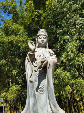 Zu Lai Temple Zen Chinese Culture Temple Brazil Zu Lai Temple Templo Zu Lai Sun Nature Chinese Temple Buddhism Sculpture Statue Spirituality Religion Human Representation Male Likeness Art And Craft Sculpted Female Likeness Art EyeEmNewHere
