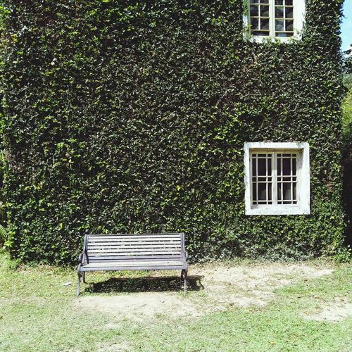 old chair in front of house Window Architecture Building Exterior Built Structure Grassland