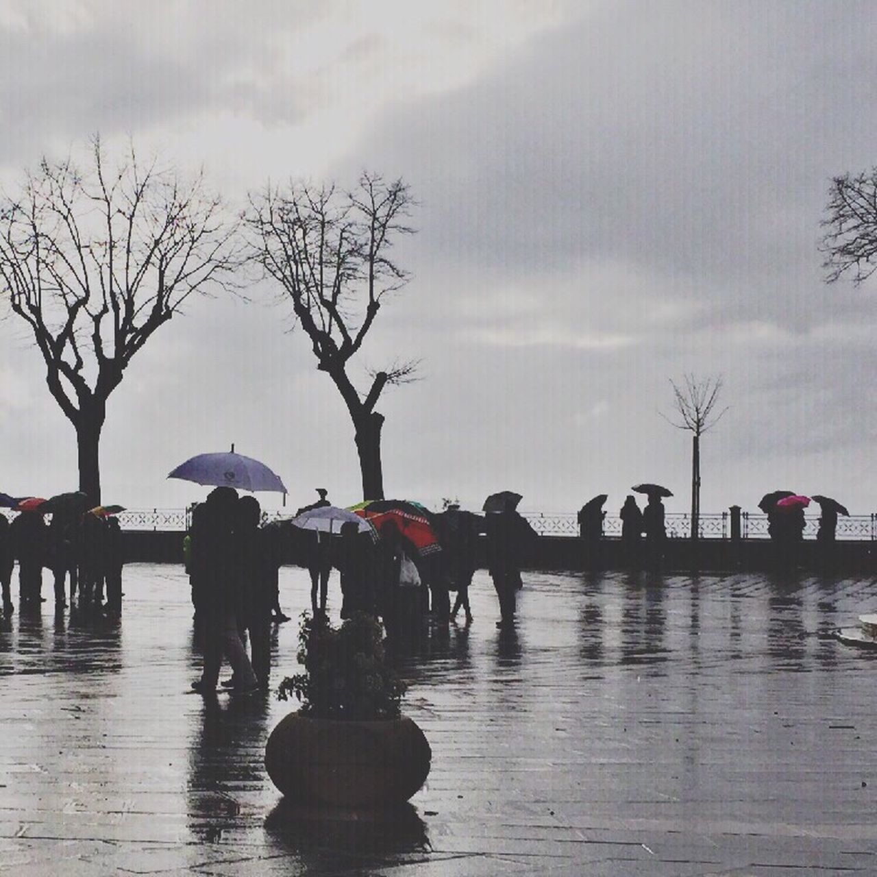 rain, weather, water, men, wet, reflection, real people, nature, outdoors, large group of people, sky, day, women, tree, flood, beauty in nature, under, mammal, people