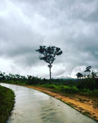 Cambodiaroadtrip Offroad Landscape