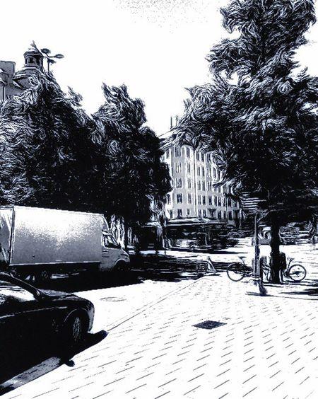 Bnw_friday_eyeemchallenge Bnw_street Tree City Outdoors Eye4photography  Streetphotography