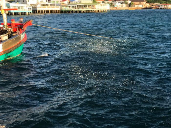 Water Nautical Vessel Waterfront Mode Of Transportation Transportation Day Sea Fishing Boat Sailing Rippled