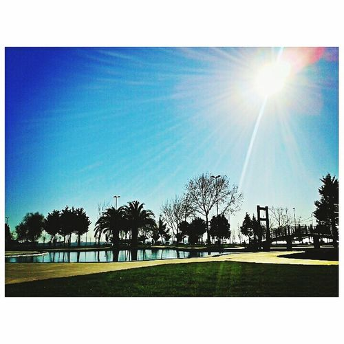 🌴☀ Landscape Huzur Sunlight Popular Taking Photos Istanbuldasonbahar Sunny Day