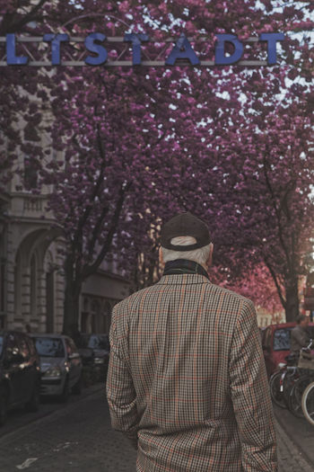 A old man infront of the entrance to the famous Heerstraße in Bonn, whichs cherry blossom trees are reknown around the world.. Architecture Bonn Heerstraß Building Exterior Built Structure Cap Cherry Blossom Cherry Blossom Tree Cherry Blossoms City Day Flower Hat Kirschblüten  Men Old Man Old Men One Person Outdoors People Real People Rear View Sakura Sakura Blossom Standing Tree First Eyeem Photo