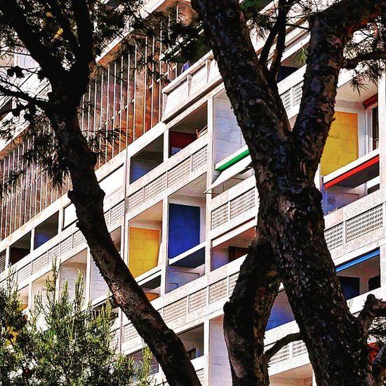 Cité Radieuse Nikonfr Nikonfrance Marseille Architecture Cite Marseillerebelle Lecorbusier Archilovers Rooftop Vintage Tree Colors Exponewhotel2015