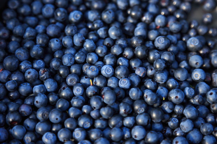 Full Frame Shot Of Blueberries