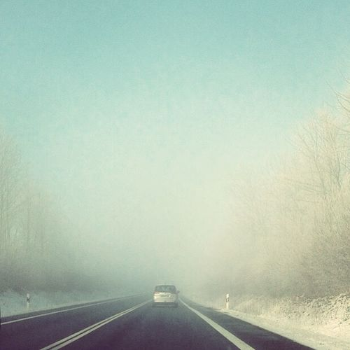A long drive Relaxing Winterscapes Snow ❄ Peace First Eyeem Photo