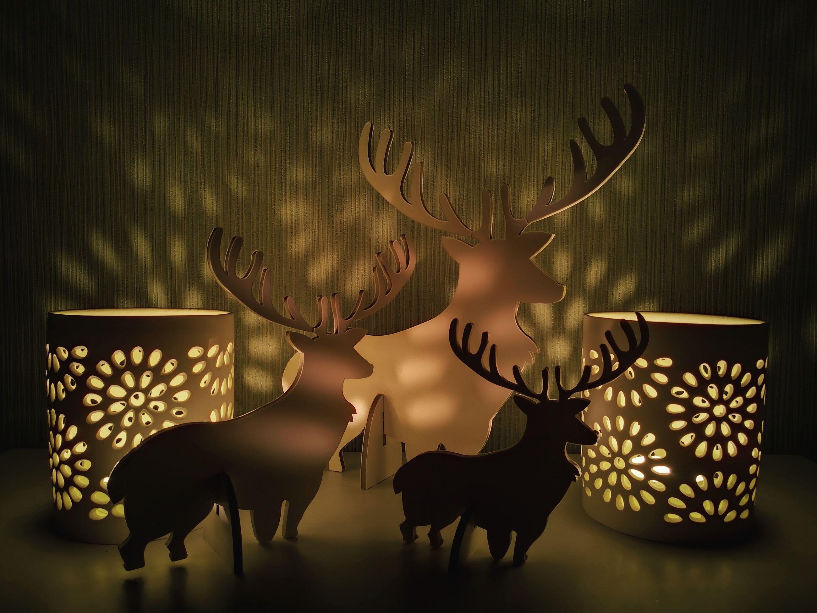 indoors, no people, reindeer, antler, deer, christmas, moose