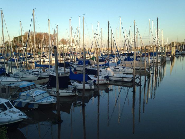 Port Yacht Club Harbour sailing Sailboat Sail
