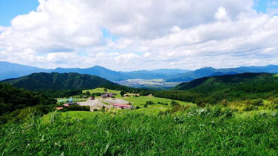 EyeEm Selects 山 草原 福井 大野 六呂師 Agriculture Valley Mountain Mountain Range Tea Crop Environmental Conservation Field Landscape Farm Rural Scene Crop  Cloud - Sky Social Issues Scenics Outdoors Green Tea High Angle View Day Beauty In Nature EyeEmNewHere