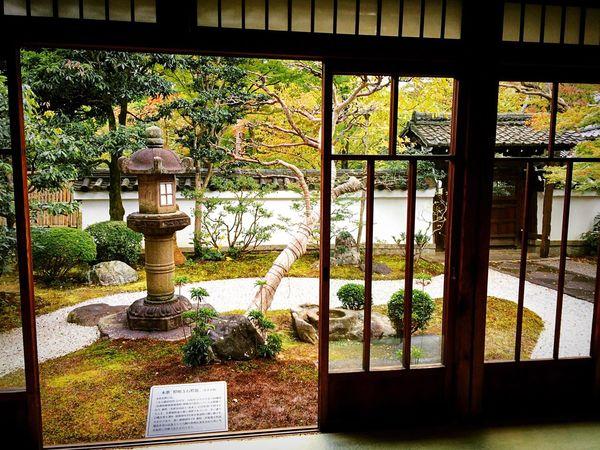 真如堂 真正極楽寺 本坊庭園 京都 Kyoto Garden Formal Garden Enjoying Life Japanese Garden Relaxing Memories 2015