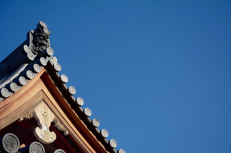 Low angle view of shinto temple at yoyogi park