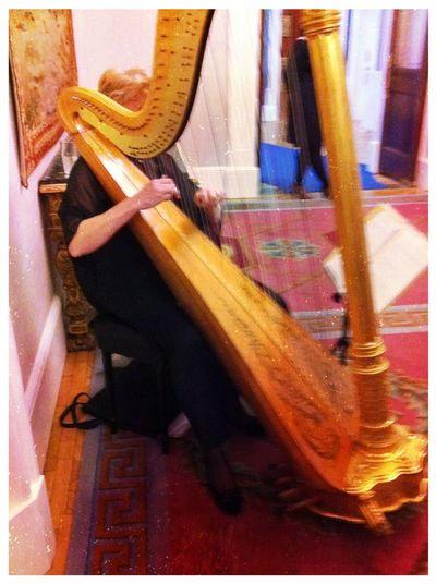 harp at Dublin Castle Conference Centre Harp