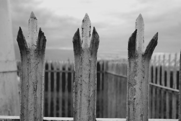 Close-up of wooden fence on field against sky