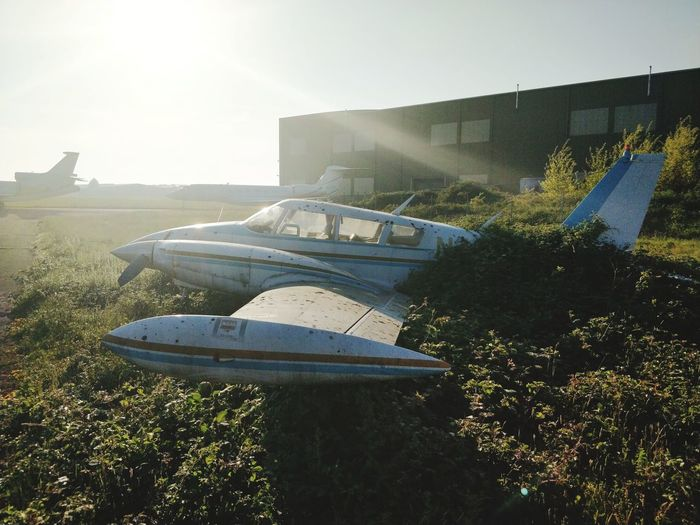 Old Wings Wings Plants Airport Plane Propeller Old Overgrown Aircraft Water Sunlight Grass Sky Built Structure