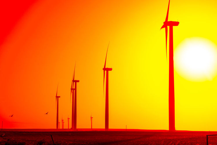 Wind turbines and life by, Cooper Billington Alternative Energy Beauty In Nature Electricity  Environmental Conservation Nature Orange Color Outdoors Photography Renewable Energy Sky Technology Wind Wind Power Wind Turbine Paint The Town Yellow