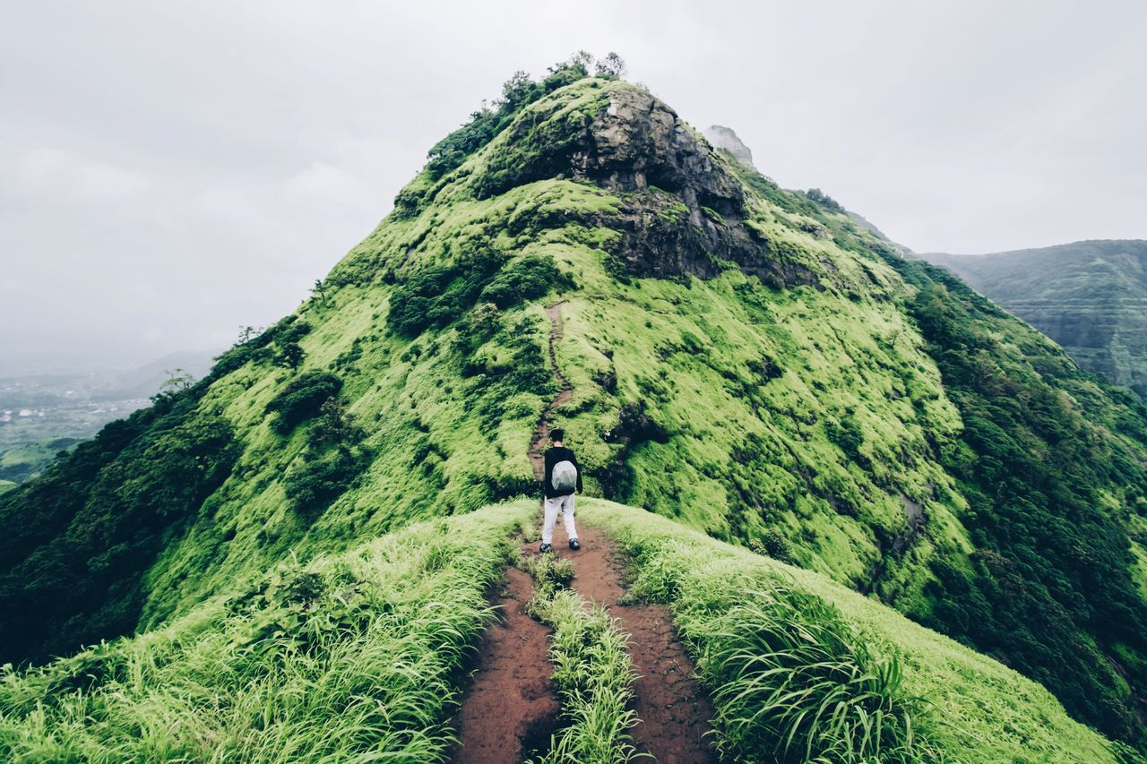 Rear View Of Man Walking On Dirt Road Amidst Grass On Mountain During Foggy Weather