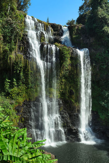 Tad Yuang Waterfall ,Pakse ,South Lao ASIA Asian  Foliage Plant Green LAO Plant Trekking Vacations Foliage Forest Fresh Jungle Landscape Laos Motion Mountain Nature Pakse Park Rock - Object Stream Tad Yuang Tad Yuang Waterfall Water Waterfall