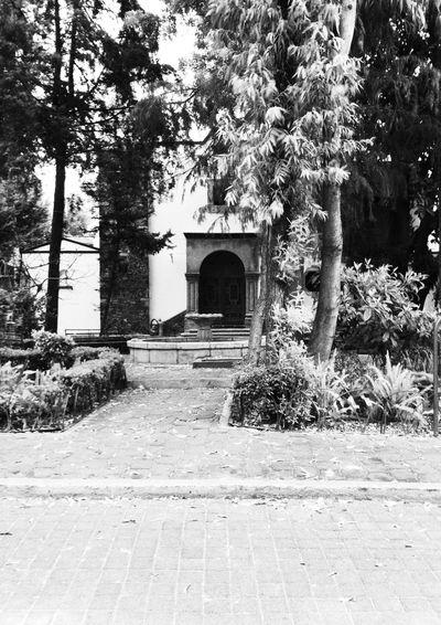 La plaza del Pueblo de Romita (Colonia Roma)
