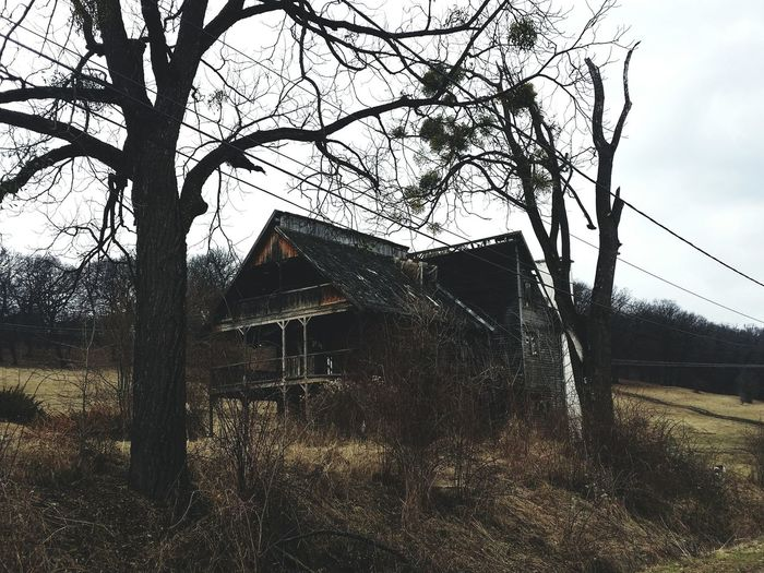 Old House Haunted Forest Hoia Baciu Forest Built Structure Architecture Sky Tree Bare Tree Building Exterior No People House Day Outdoors Nature