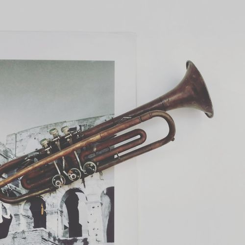 My Best Photo Musical Instrument Wind Instrument Jazz Music Music Arts Culture And Entertainment Close-up