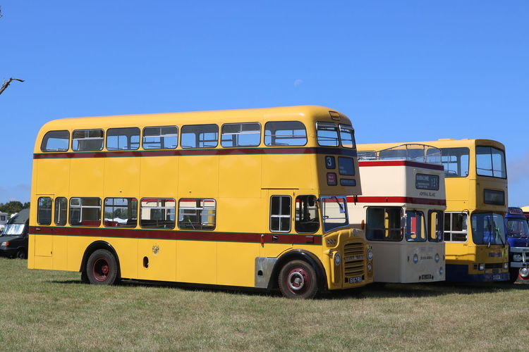 Bus Buses Old