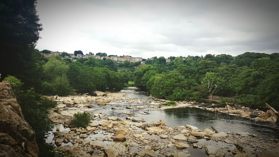 Richmond North Yorkshire River View