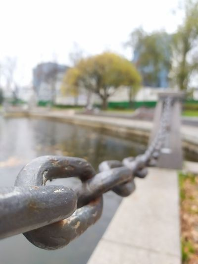 Close-up of chain on railing