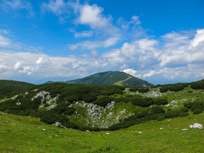 View of Velika