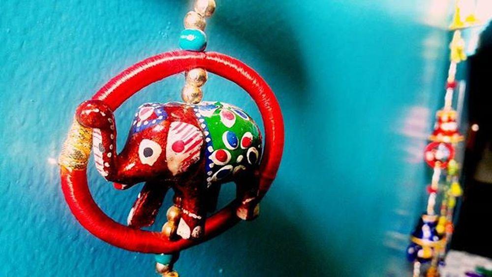 😑want a dslr camera badly😖 MyShoeboxOfPhotographs Mycreativefeed Cultural Colourful Thatperfectshot_ DelhiGram Candy Rajasthani Dailydiary Colorful Passionphotography