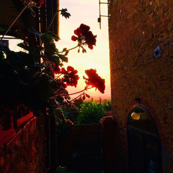 Italy Toscana Sunset