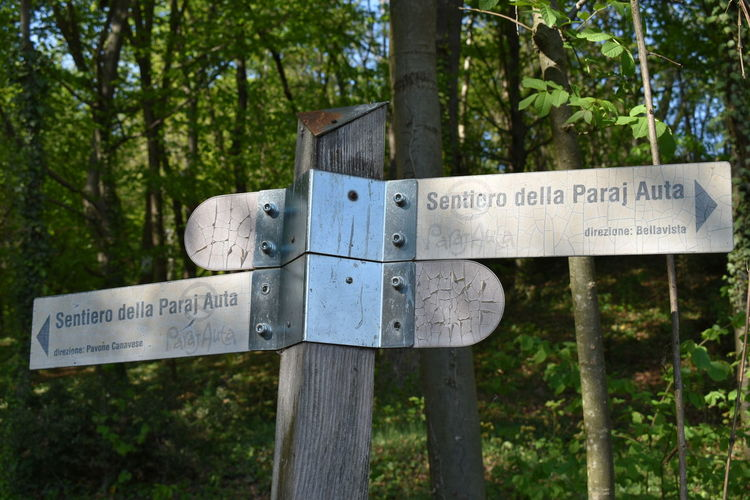 Information sign in forest