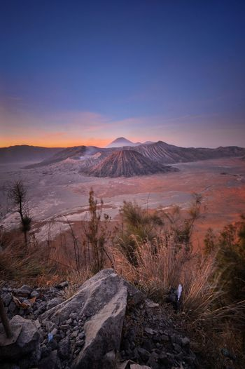 Bromo Tree Clear Sky Mountain Sky Landscape Volcanic Landscape Volcano Bromo-tengger-semeru National Park Volcanic Rock Geyser Snowcapped Mountain Active Volcano Snow Covered East Java Province Big Island - Hawaii Islands Volcanic Activity Volcanic Crater Kilauea Cherry Blossom Ash Lava Erupting