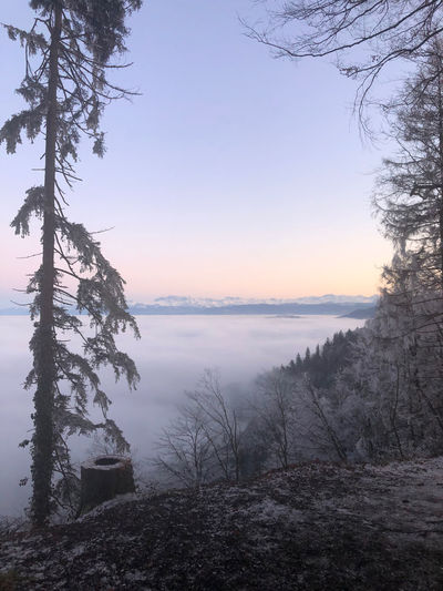Alpe Sky Tree